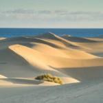 Sanddüne-Gran Canaria